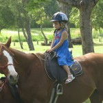 Horseback at Eumundi