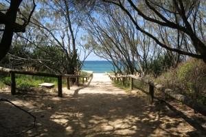 Our Beach Paradise